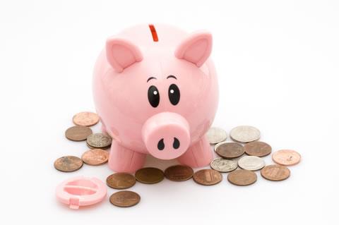 Deel 2 het bourgondische leven van een spaarvarken for Zuinig leven en sparen